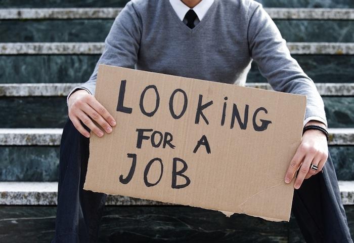 Recherche de stage ou d'emploi